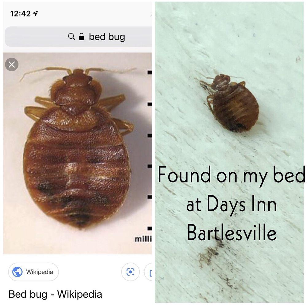 Days Inn & Suites by Wyndham Bartlesville: 1410 Southeast Washington Blvd, Bartlesville, OK