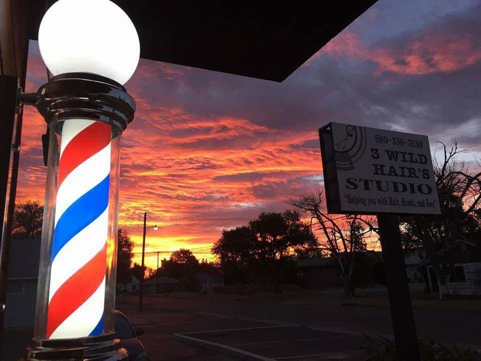 3 Wild Hairs Studio: 1322 N Main St, Guymon, OK