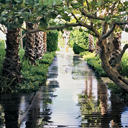 Photo Of The Standard Spa Miami Beach Fl United States Grounds At