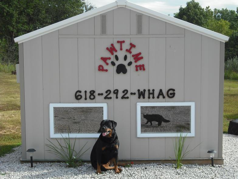 Pawtime Pet Sitting: 2996 Wonder Trl, Fillmore, IL