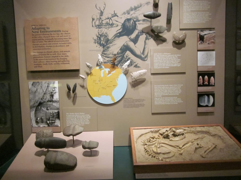 Dickson Mounds State Museum: 10956 N Dickson Mounds Rd, Lewistown, IL