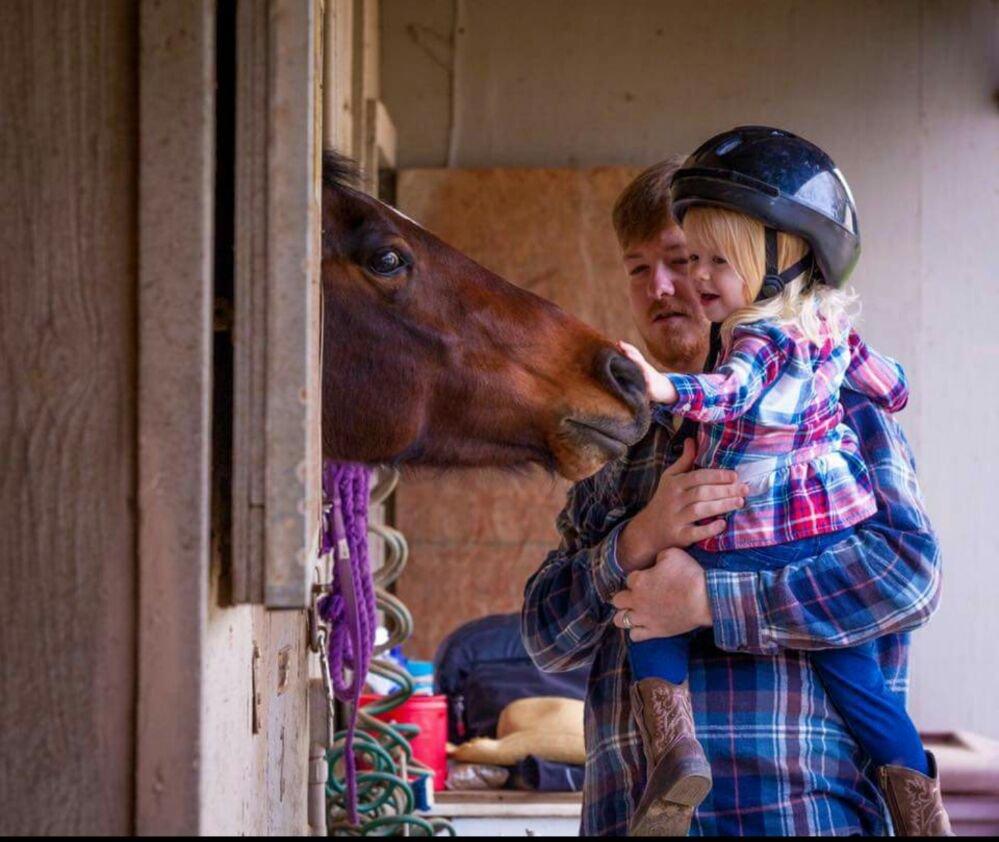 Healing Hands Horsemanship