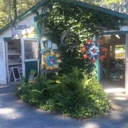 Info On Attracting Hummingbirds Photo Of King S Greenhouse Stallings Nc United States