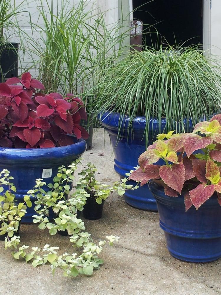 Ekana Nursery & Landscaping: 417 E US Hwy 34, Mendota, IL