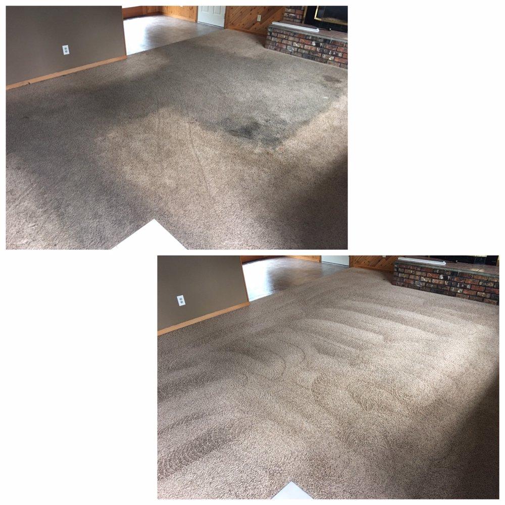 Pro-Tech Carpet Cleaning: Burien, WA