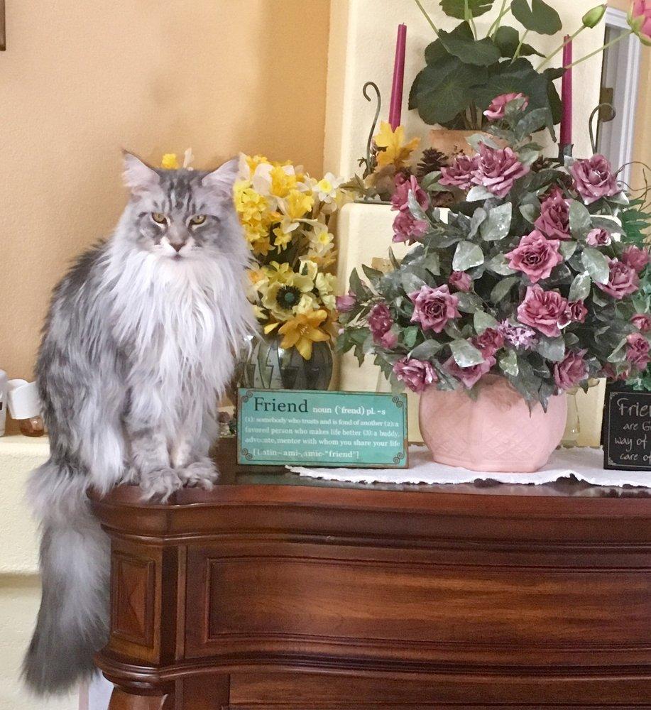 Peace of Mind Home & Pet Care Services: Prescott, AZ