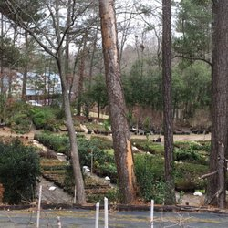 Photo Of Accent Nursery And Landscaping Douglasville Ga United States