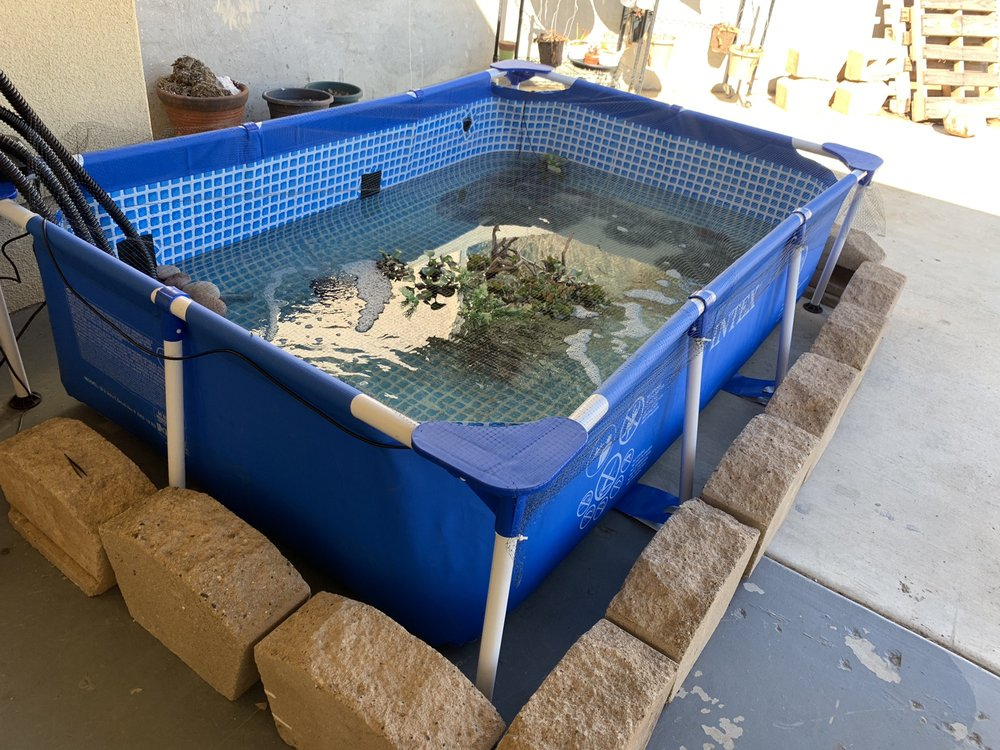 Alpine Fishery: 6724 Dehesa Rd, El Cajon, CA