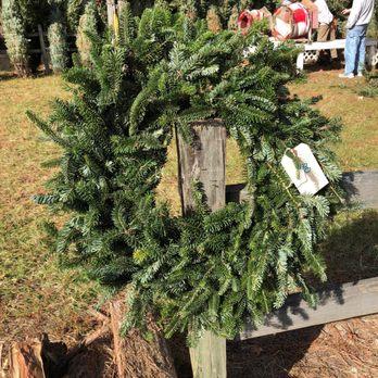 Toogoodoo Christmas Tree Farm - Christmas Trees - 7355 Toogoodoo ...