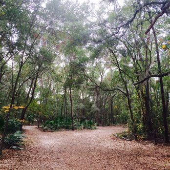 Jacksonville Arboretum And Gardens 146 Photos 23 Reviews Botanical Gardens 1445 Millcoe