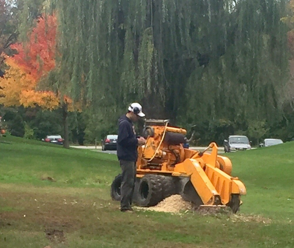 Mario's Tree Service: Addison, IL