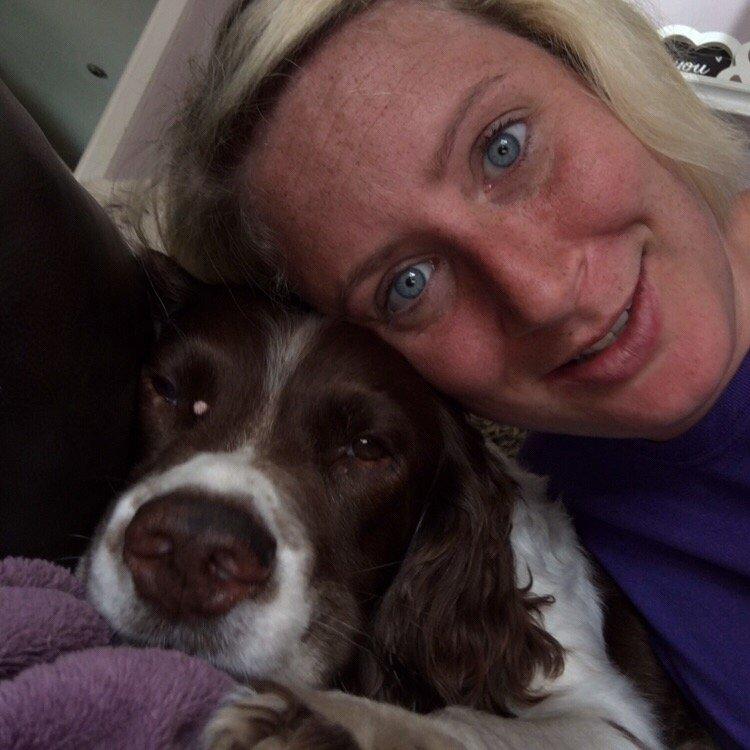 Dog Sitting At Home Stourbridge