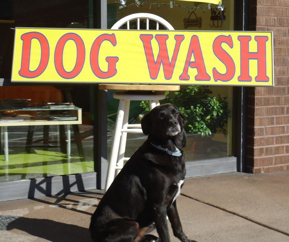 Woof woof self serve dog wash closed 40 reviews pet groomers comment from roya b of woof woof self serve dog wash business owner solutioingenieria Gallery