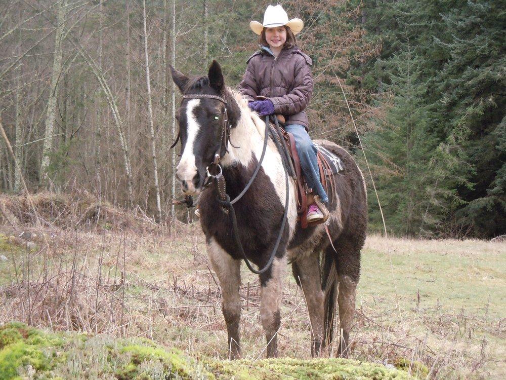 Horseback Riding Trail Rides Long Island
