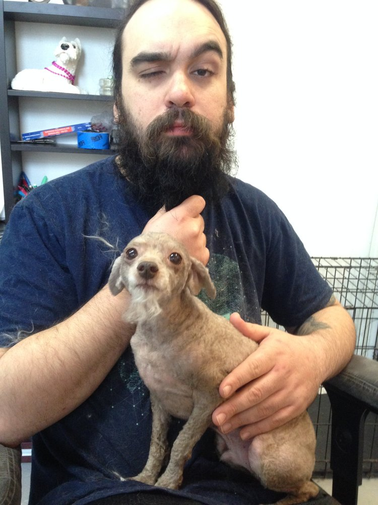 Scrub a dub dog wash 20 photos 32 reviews pet groomers 3500 phil f says named after a dog allows dogs and serves every whiskey you can think of one of many things to do in the area while we spiff up your pup solutioingenieria Image collections