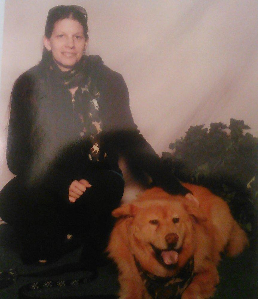 Toyota Dealers In Ri >> Furry Fellas Dog Walking & Pet Sitting Service - 58 Photos ...