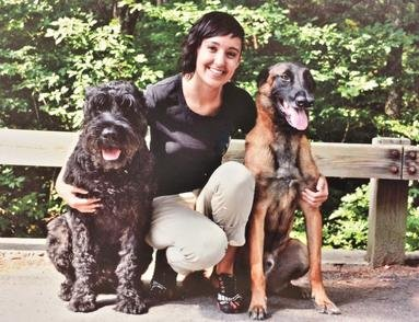 Personal Protection Dog Training Schools