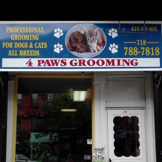 4 paws grooming salon 40 reviews pet groomers 410