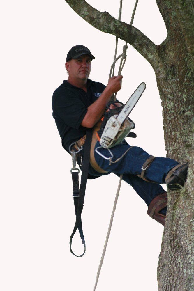 John D Business Owner Davis Tree Service