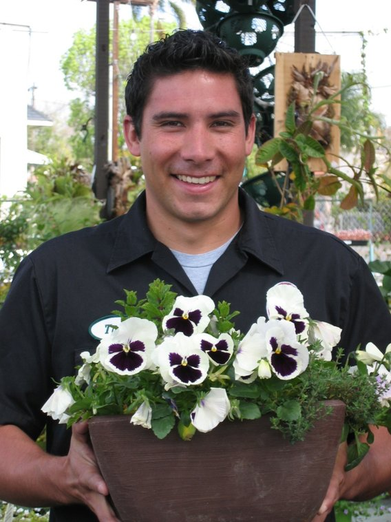 Comment From Tiger P Of Mission Hills Nursery Business Owner