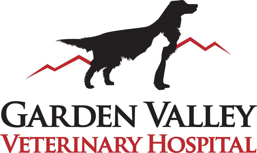 Garden Valley Veterinary Hospital Kennel Pet Sitting 32450 State Hwy 257 Windsor Co