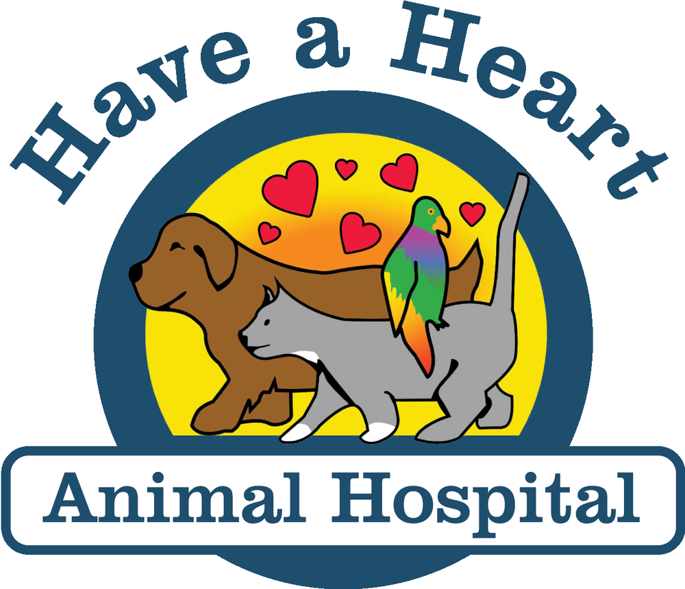 Comment From Kristen V Of Have A Heart Animal Hospital Business Owner