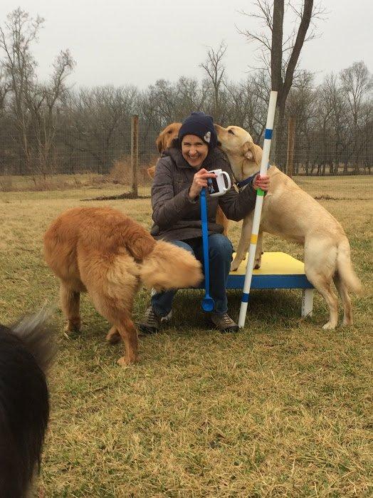Dog Training In Martinsburg Wv