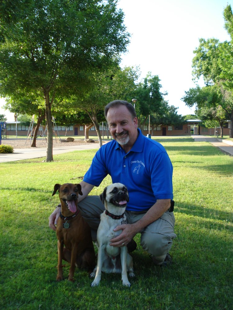 Dog Training Tempe Az