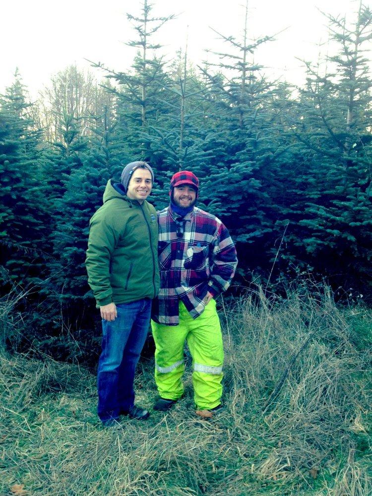 White Lane Christmas Tree Farm - CLOSED - 24 Photos - Christmas ...