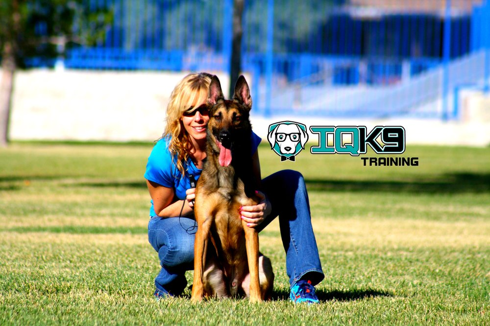 Dog Training Oceanside Ca