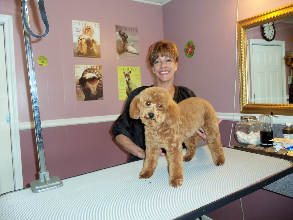 Dog Grooming Port Chester Ny