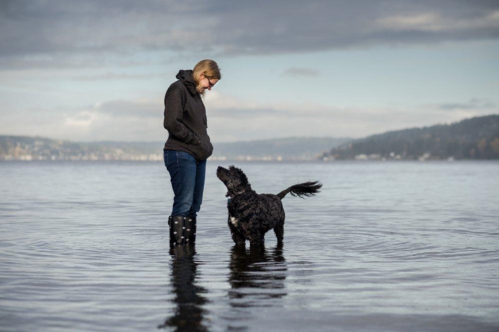 Dog Training Seattle Yelp