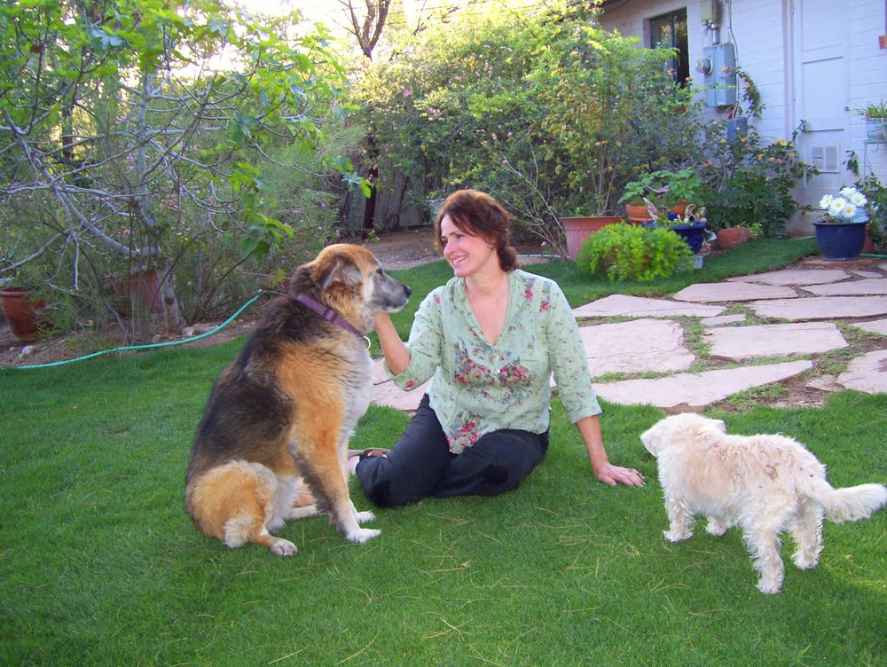 Home Sweet Home Pet Sitting and Dog Walking - Pet Sitting ...