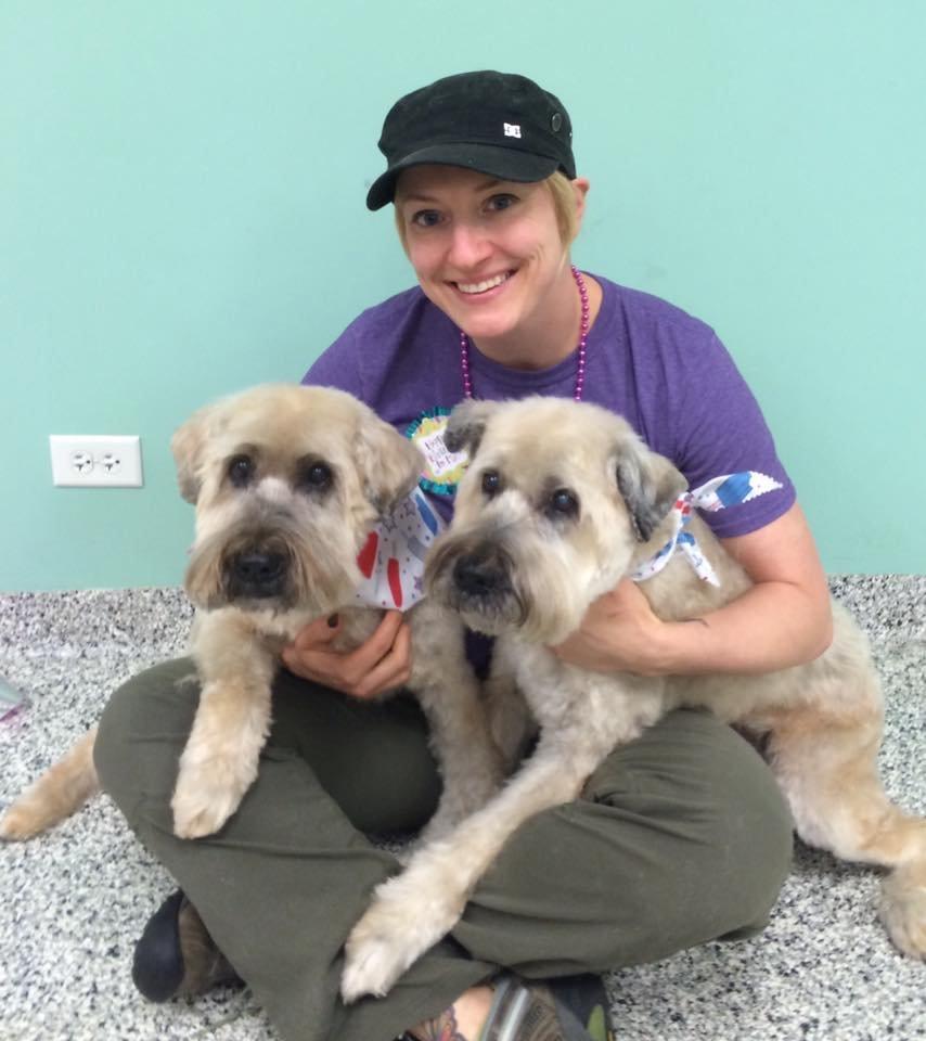 Shear Paradise Pet Salon Spa