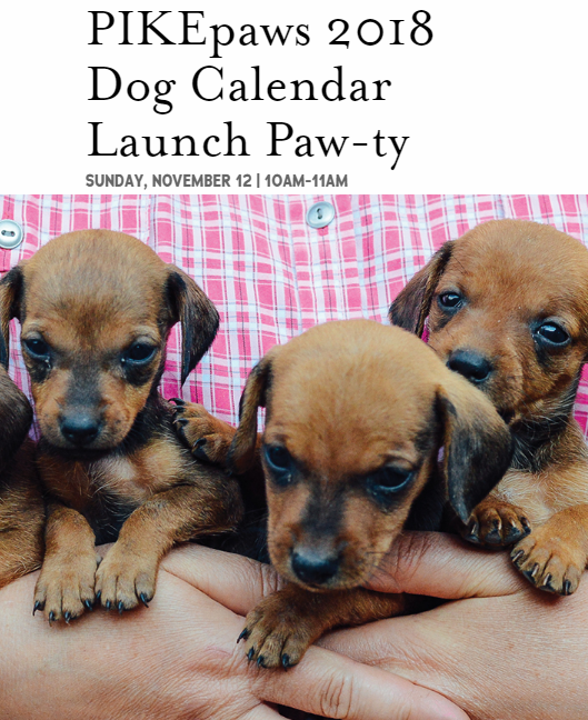 pike and rose pikepaws 2018 dog calendar launch paw ty north bethesda events yelp