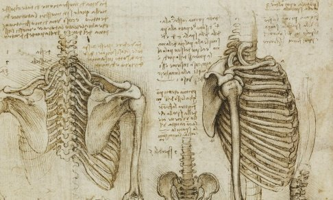 Leonardo da Vinci: the Mechanics of Man - Special Event with the ...