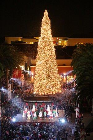 Island Christmas Tree.Fashion Island S Holiday Tree Lighting Newport Beach