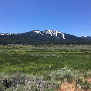 Tahoe R.