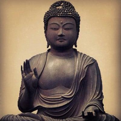Buddha M.