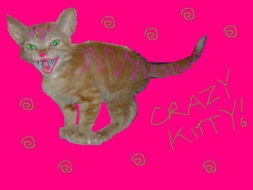 Kitty F.