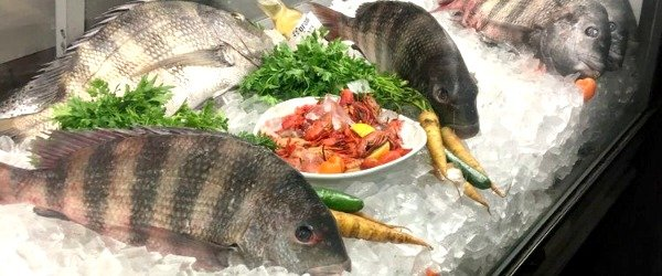 A pescatarian 39 s delight jacksonville yelp for Julington fish camp